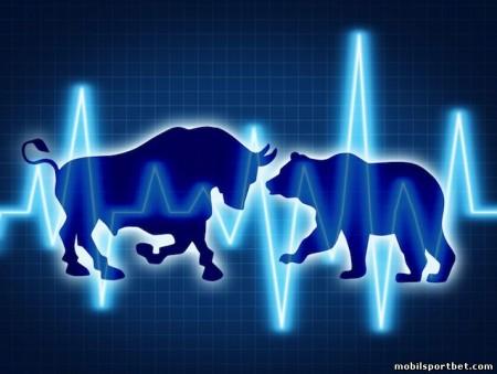 bear-and-bull